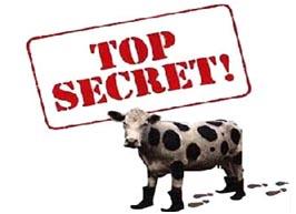 9.10.15 secret everyone wants